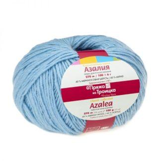 Азалия бледно-голубой 0276